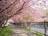 Thứ Hai, 25/04/2016 - 08:28 Du học thực tập ngành du lịch, nhà hàng, khách sạn tại Nhật
